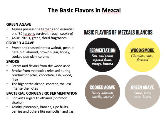 Mezcal Info